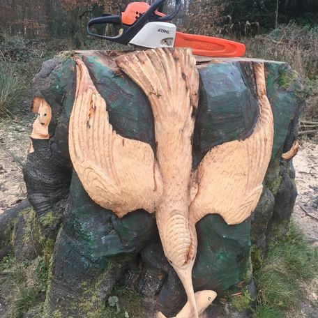 King fisher, carved at Heaton Park