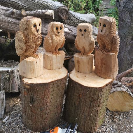 styalised barn owls