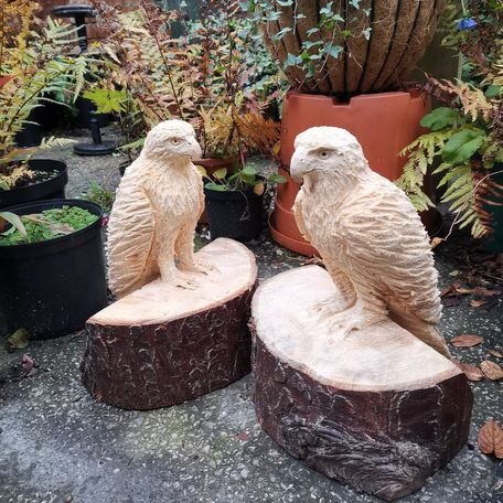Pair of Eagles