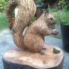 Squirrel with nut and shell