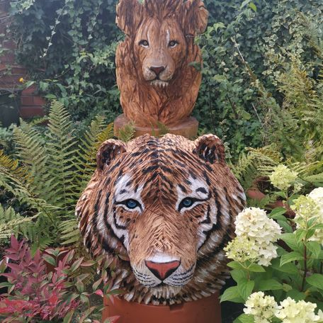 male tiger and Lion head carvings, life size