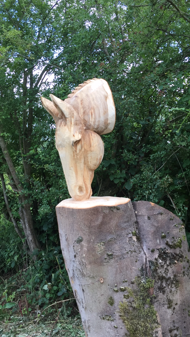 Gallery Tree Carving Uk Elegant Chainsaw Carvings