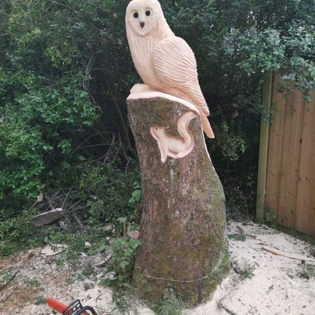 3ft, Barn owl with squirrel inlay