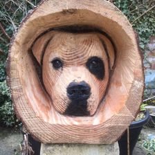 dogs head carved in a log